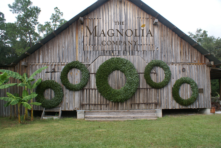 The Magnolia Company