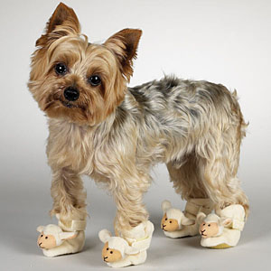 casual-canine-dog-slippers-lamb-1