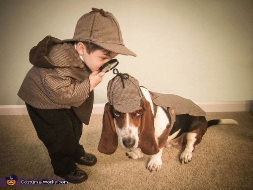 dog inspector