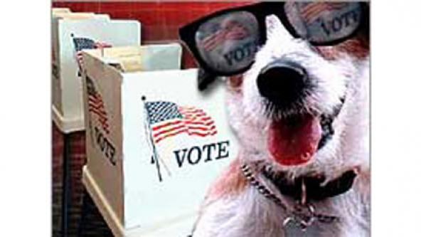 Dog-Vote-(Glasses_PollBooth)cropped