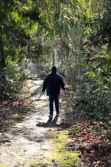 camp-long-trail