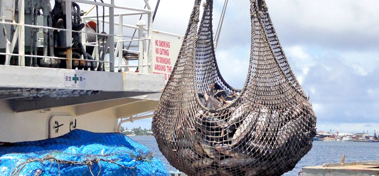 PNA: US violates fishing rule