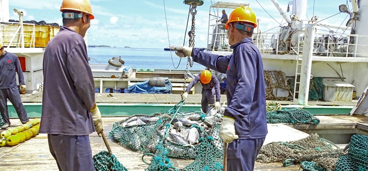 Fishing for tuna answers