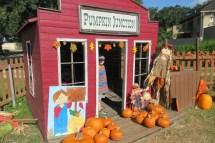 Marshall went inside the pumpkin house.
