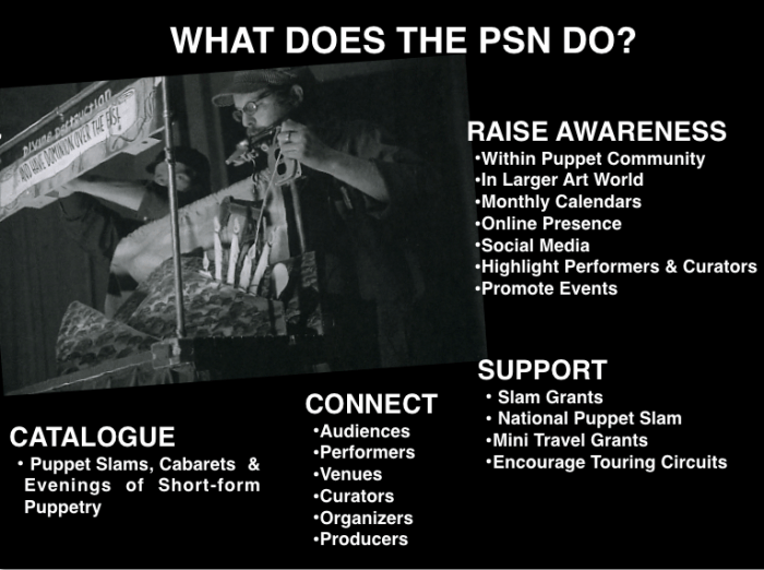 What does PSN do?