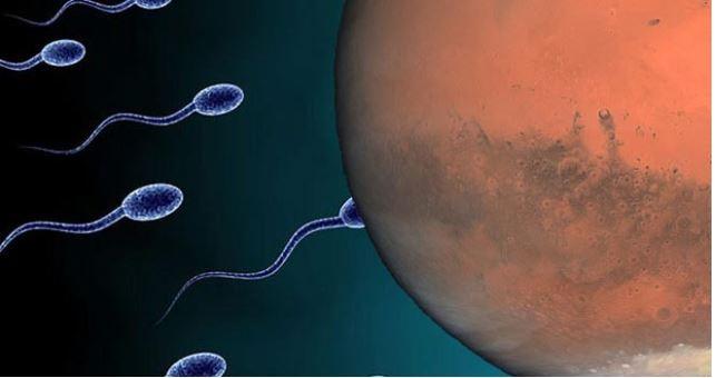 NASA uzaya insan spermi gönderiyor