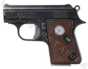 Handguns Prohibited