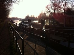 Winter's Morning
