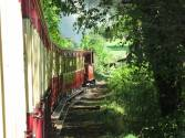 Rural steam