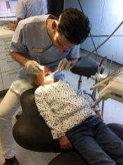 tandarts aislynn