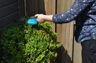 gardena buxus gereedschap