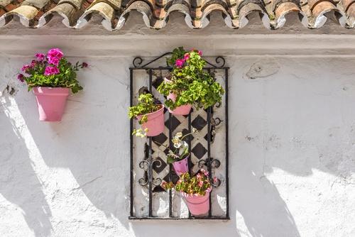 hangende roze bloempotjes