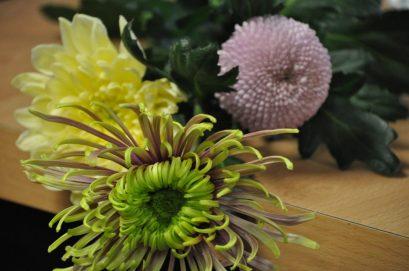 bloemstuk maken met chrystanten