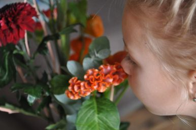 bloemen van greetz