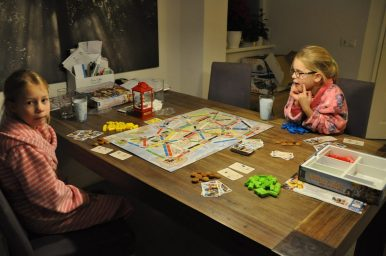 ticket to ride spel (13)