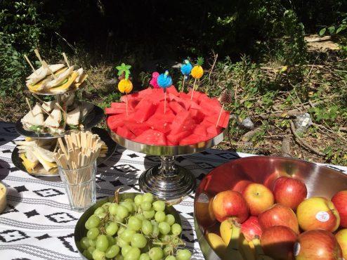 pr4kids picknick