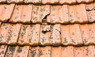 gebroken dakpan