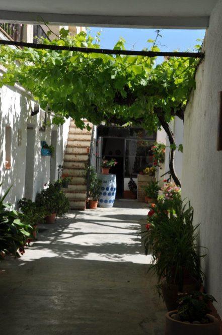 reis naar costa daurada (215)