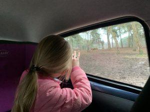 winter safaripark beekse bergen