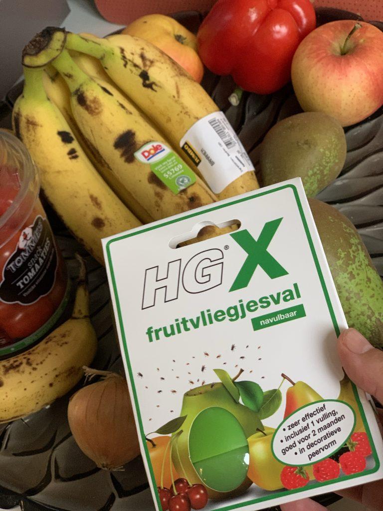 hg schoonmaakspullen fruitvliegjes