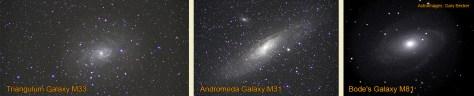 Bode's Galaxy M81