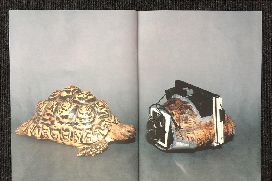 Abbildung aus der Publikation der Künstler Taiyo Onorato & Nico Krebs, auf denen sich ein zum Kamera umgebauter Schildkrötenpanzer und eine Schildkröte anblicken