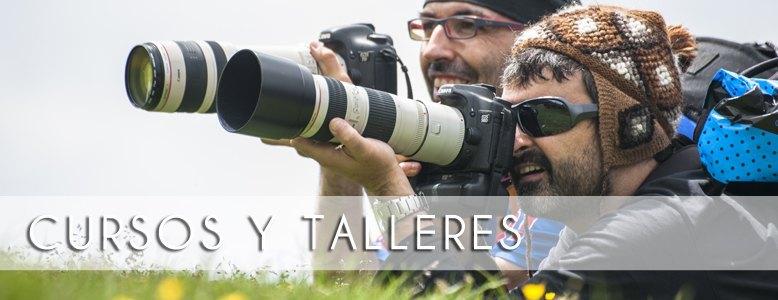 banner_CursosTalleres_ro