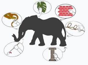 favola elefante e ciechi