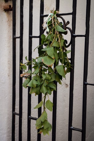2016 Jack in the Green Leaves on Wrought Iron Fate small