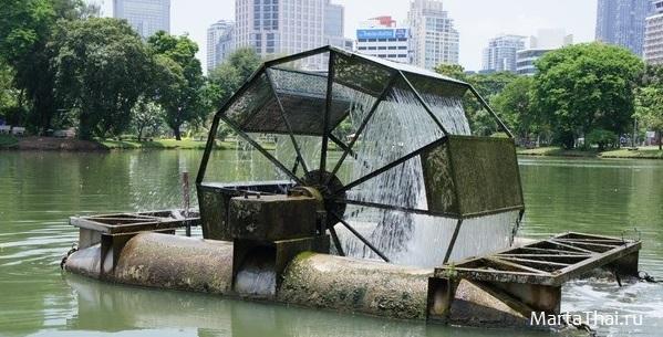 Bangkok_Lumpini_Park