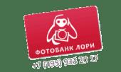 Марта Троцюк про Фотостоки