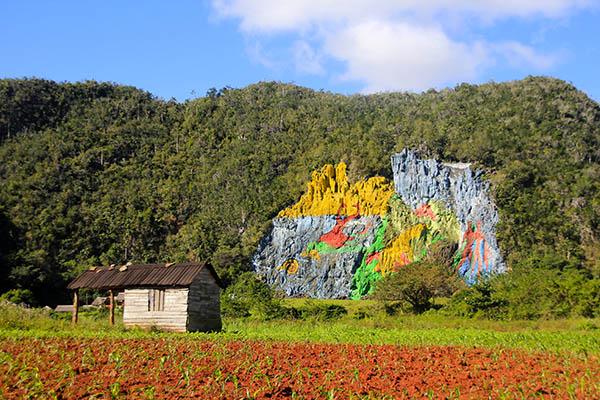 блог Марти Троцюк, графіті Куби20