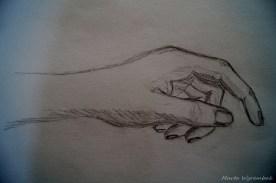 Studium dłoń 3