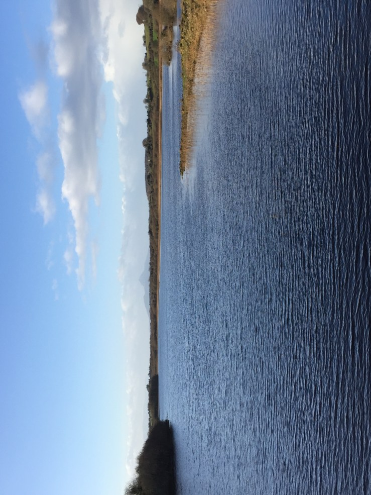 Picture of Lough Lannagh, Castlebar, County Mayo. A beautiful place to go for a walk.