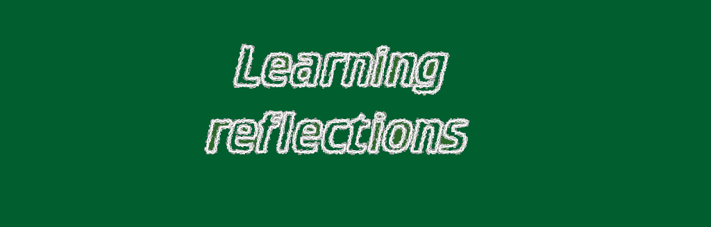 My students' reflections on their learning