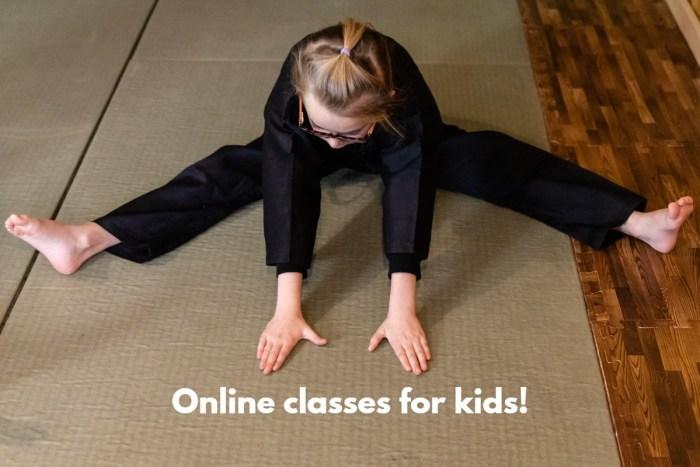 online Karate