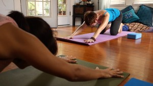 Book a Private yoga session with Marti Ewing 713-876-1232