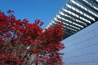 The Olympic Museum Lausanne building (7)