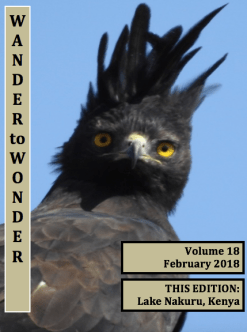 Cover-February-2018-Newsletter
