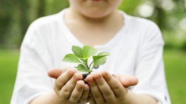 1556263327 MAPANDA CONSEJOS EDUCAR NI O PRO MEDIO AMBIENTE Consejos para educar a un niño en pro del medio ambiente segun Mapanda