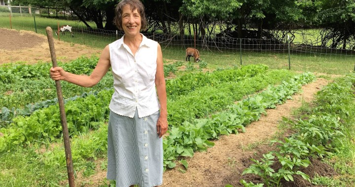 Five urban farms in south KC are on this weekend's Urban Farms & Gardens Tour