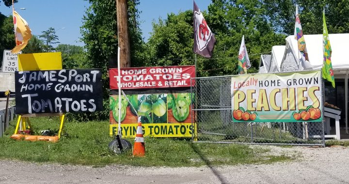 The Martin City Produce Stand