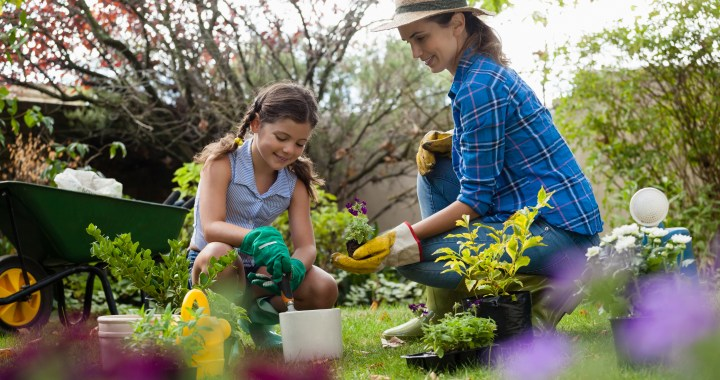 Earth Day is a great day to check out the April Gardening Calendar