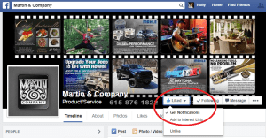 Screenshot of Facebook Like Notification Option