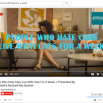 screen shot YouTube people who hate cats