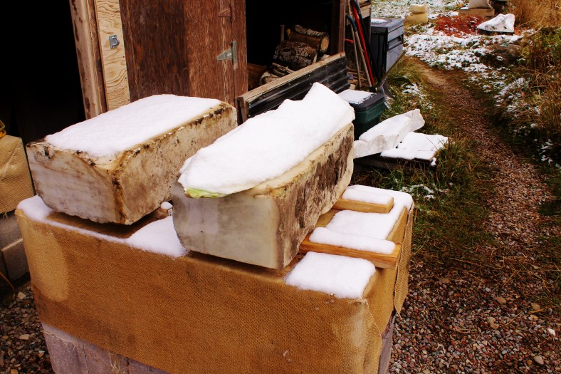 Two more 1314 Winter Collection rough blocks await their transformation outside Birdhaven's Studio Workshop, Woody Creek CO