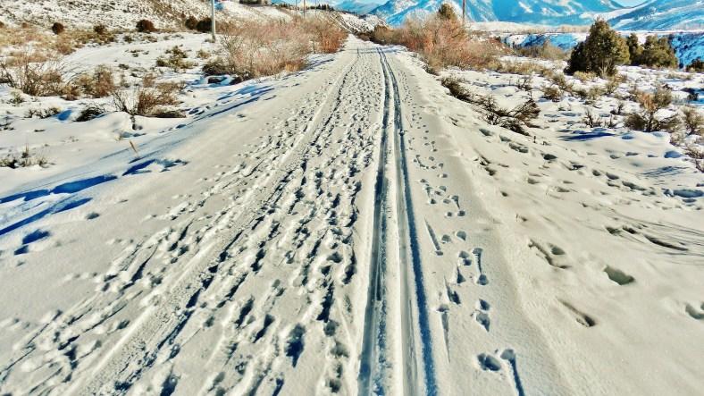 Rio Grande Track-Bed Trail, Woody Creek, CO