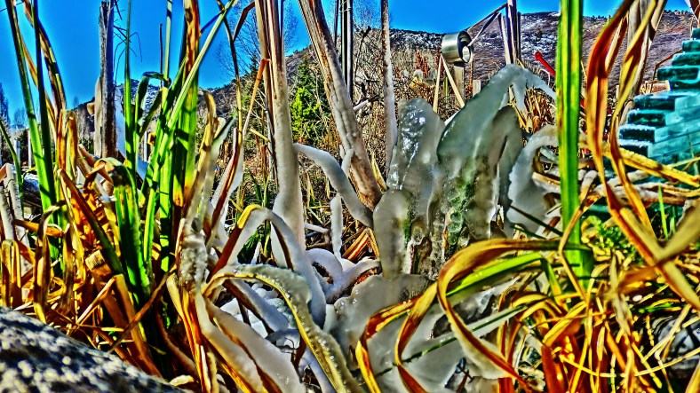Spring Ice Migration,