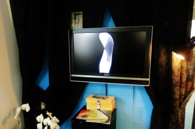Birth of a Guin on the KMJ TV, Colorado Yule Marble Sculpture by Martin Cooney