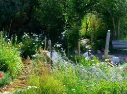The Sculpture Garden @ martincooney.com